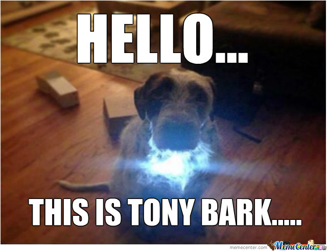 Ironman' Dog....