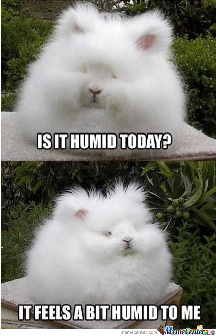 Is It Humid???