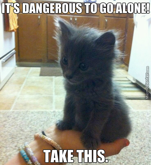It's Dangerous To Go Alone!