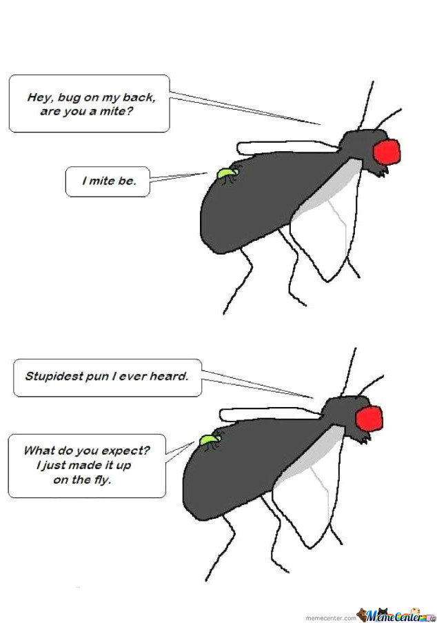 It Mite Be A Pun