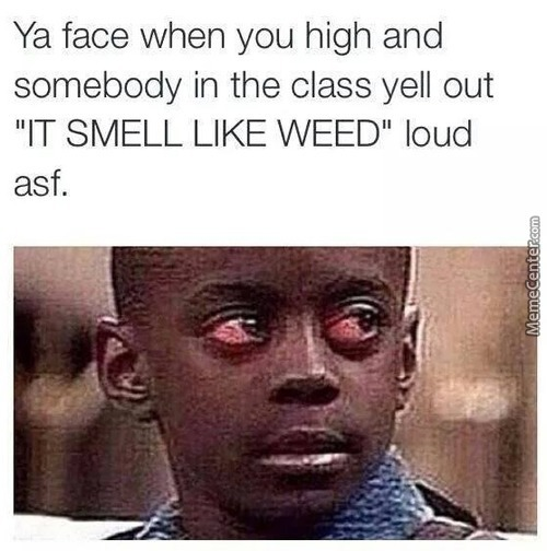 It Smell Like Weed... I'm Dying