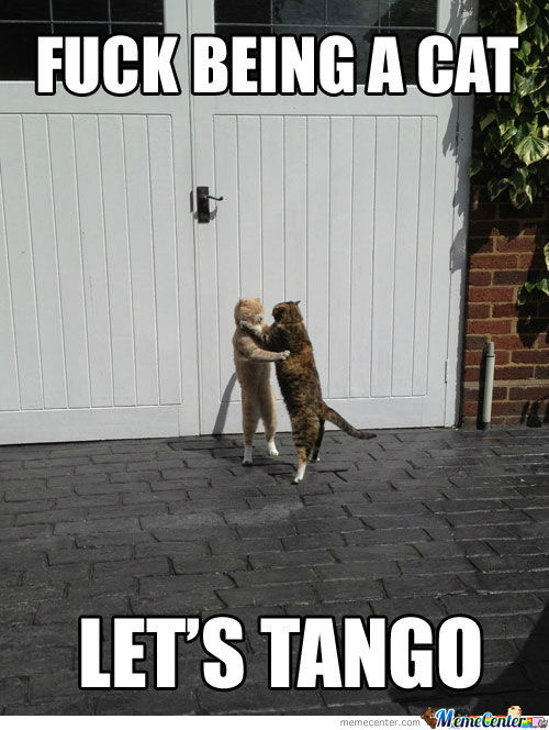 Its's Tango Time