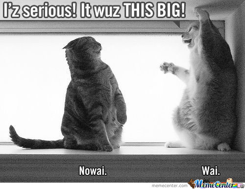 I'z Serious! It Wuz This Big!