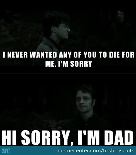 James Potter May Be Dead But He Is Still A Dad