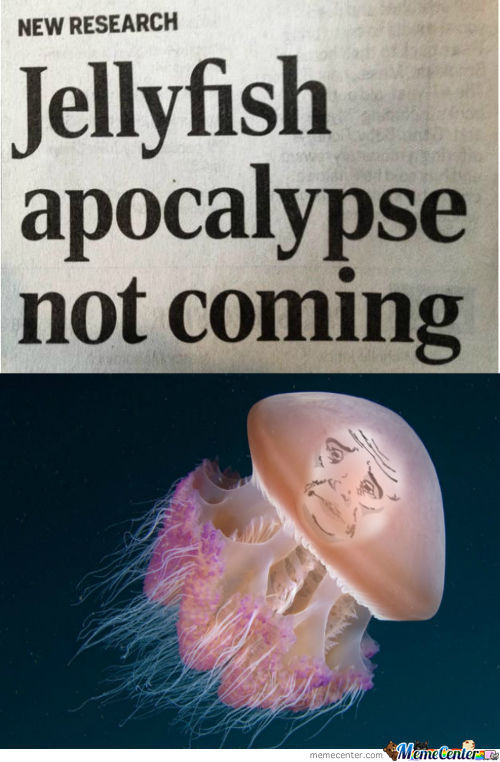 Jellyfish Arent Coming Anymore