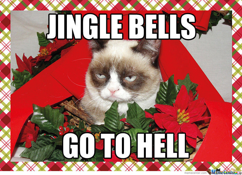 Jingle Bells Cat