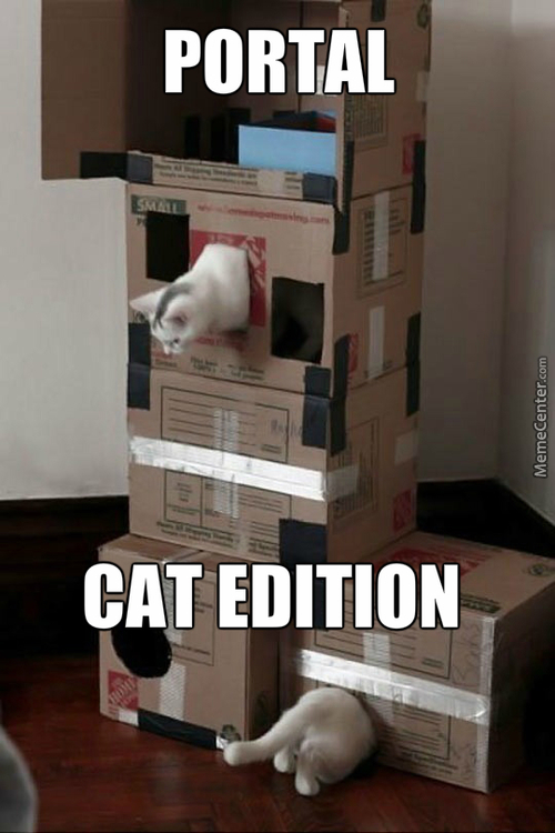 Just A Cat Playing Portal..