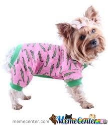 Just A Dog In Pyjamas