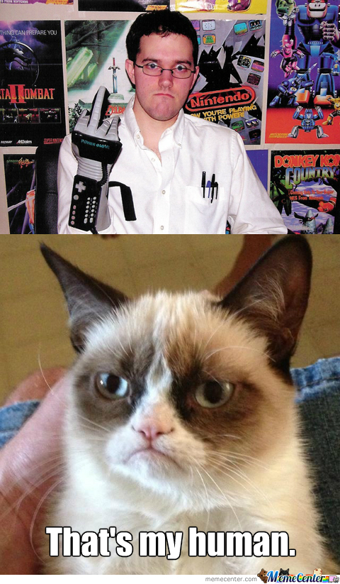 Just Another 'grumpy Cat' Meme...
