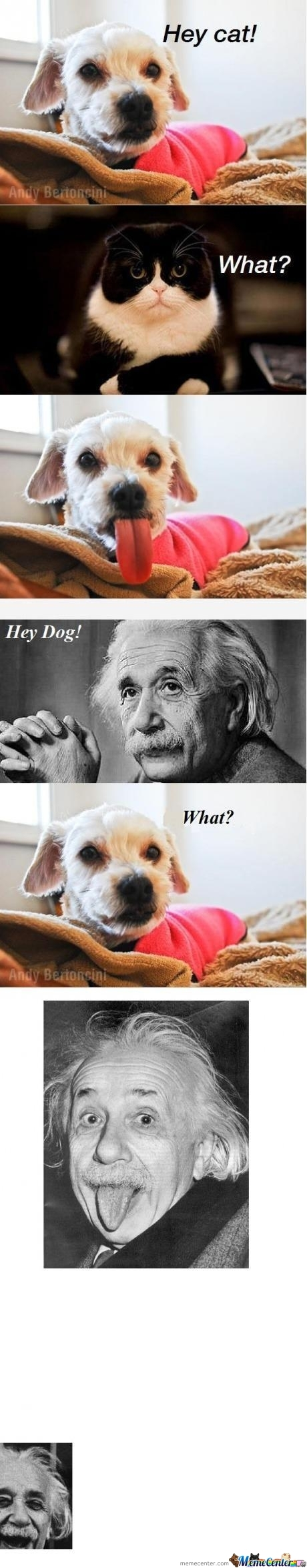 Just Einstein