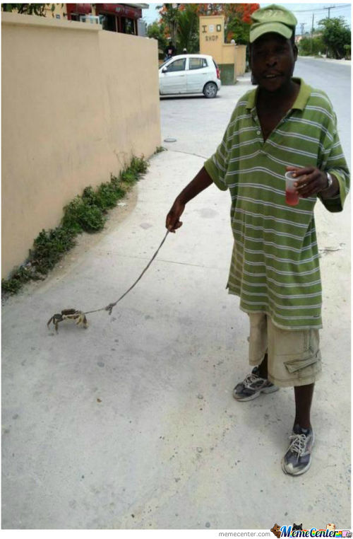 Just Walking My Crab