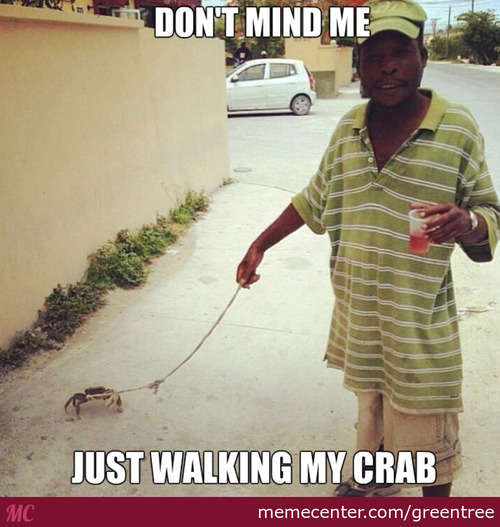 Just Walking My Crab!