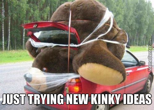 Justkinkythings - Teddy Bear In The Car