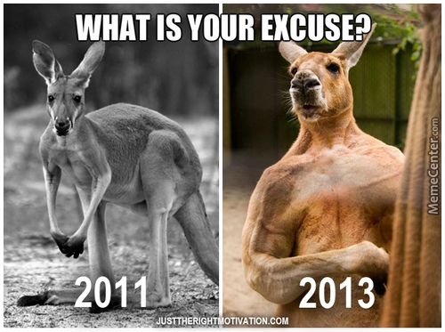 Kangaroo After Workout