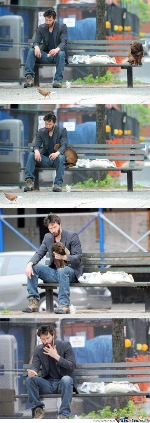 Keanu Loves Dogs
