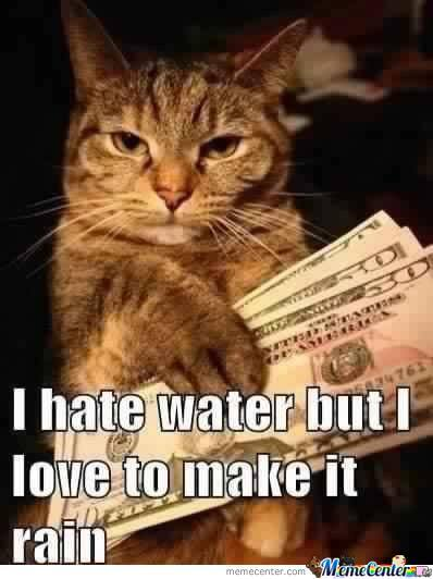 Kitty Likes To Make It Rain