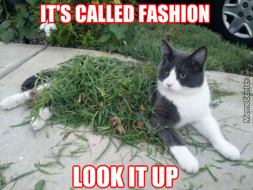 Kitty Spring Collection 2015