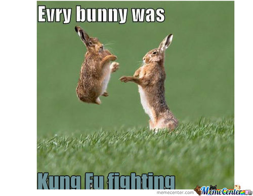 Kung Fu Fighting ~