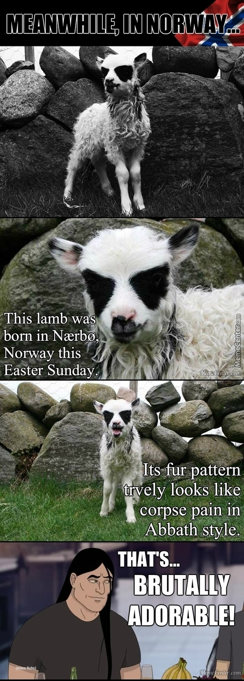 Lamb Born With Corpse Paint. Metal. (Link In Source)