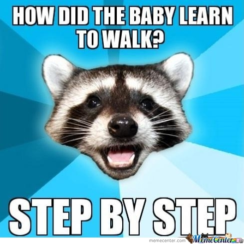 lame pun raccoon - photo #22