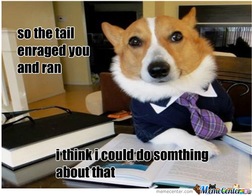 Lawyer Dog Can Help