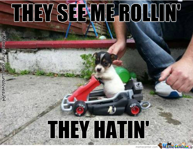Le Dog Be Like: Vroom Vroom Mothafuckas :3