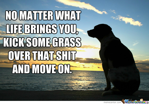 Lesson From A Dog