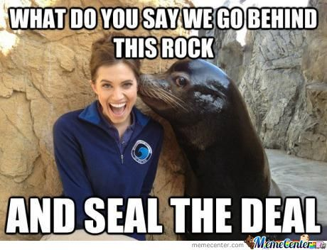 Let's Seal The Deal