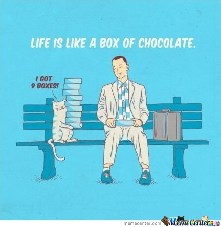 Life Is Like A Box Of Chocolate.