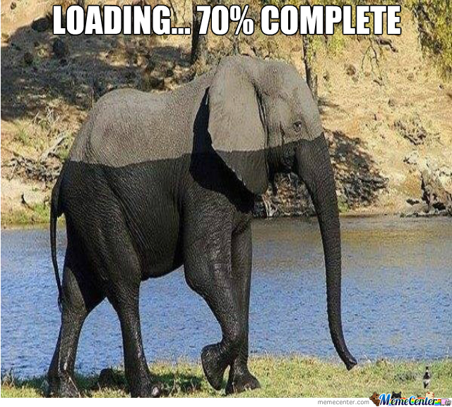 Loading An Elephant!