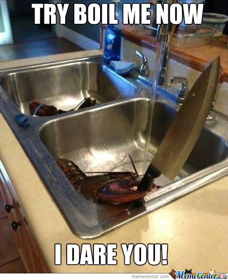 Lobster Memes. Best Collection of Funny Lobster Pictures