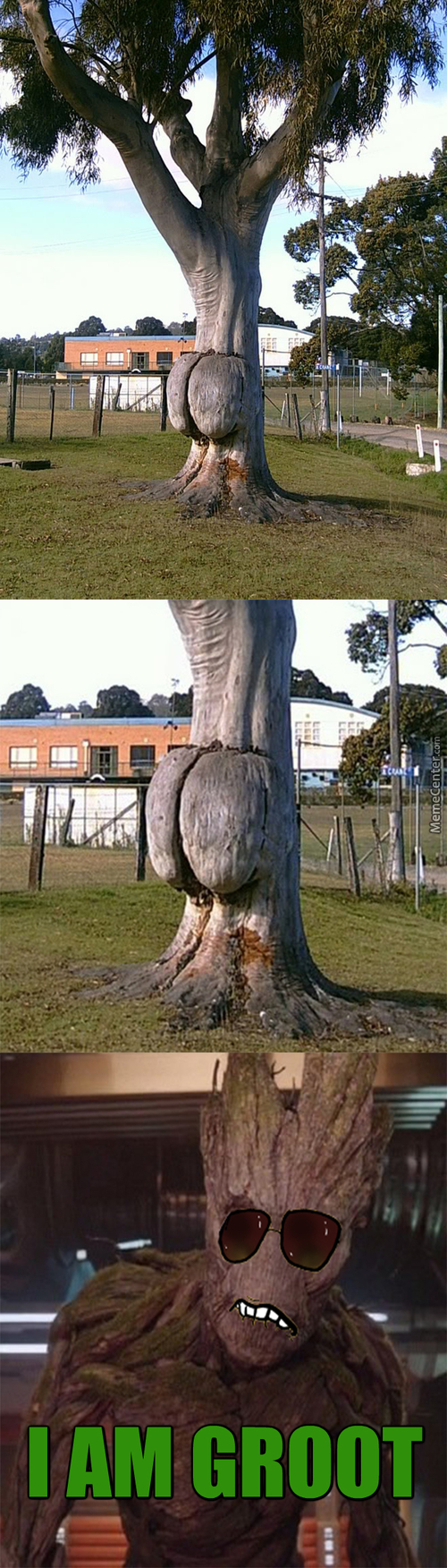 Look At Mother Nature Got Dat Junk In Dat Trunk