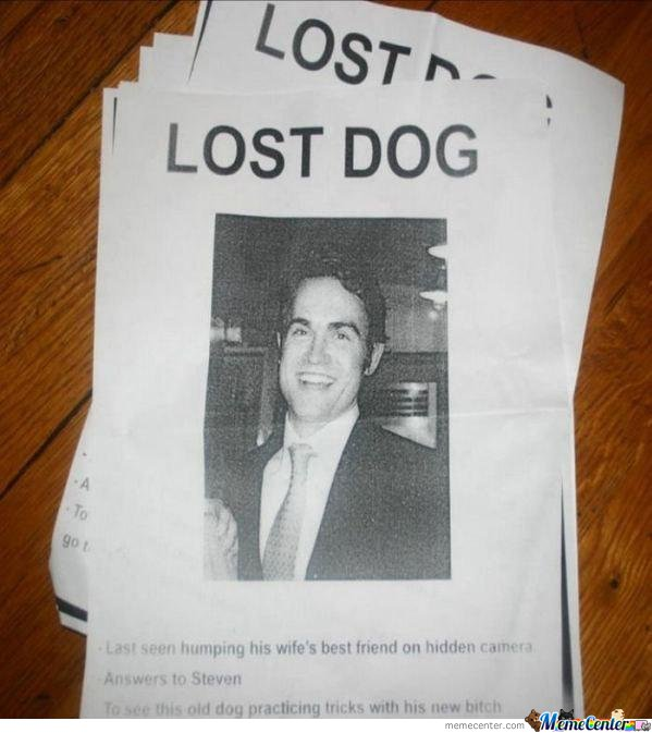 Lost Dog... Wait What?