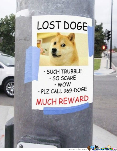 Lost Doge