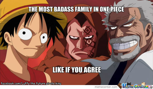 Luffy Family
