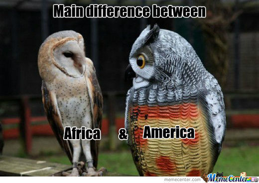 Main Difference