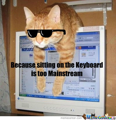 Mainstream Cat Irl