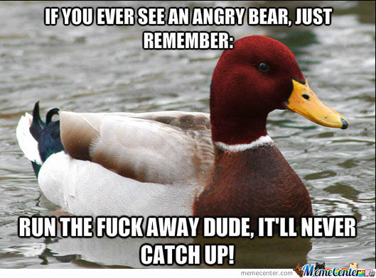 Malicious Advice Mallard On Bear Attacks: