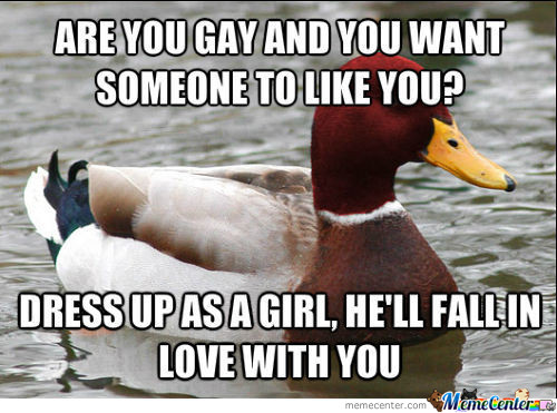 Malicious Advice Mallard On Gays