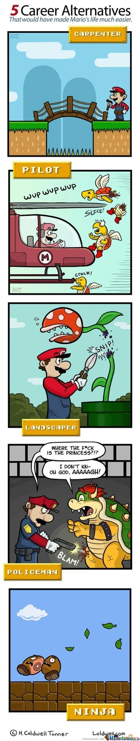 Mario Alternative Jobs