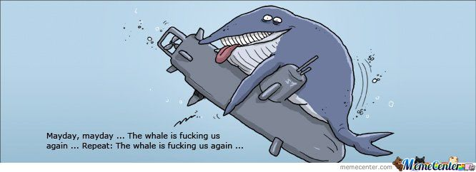 Whale Fucking 16