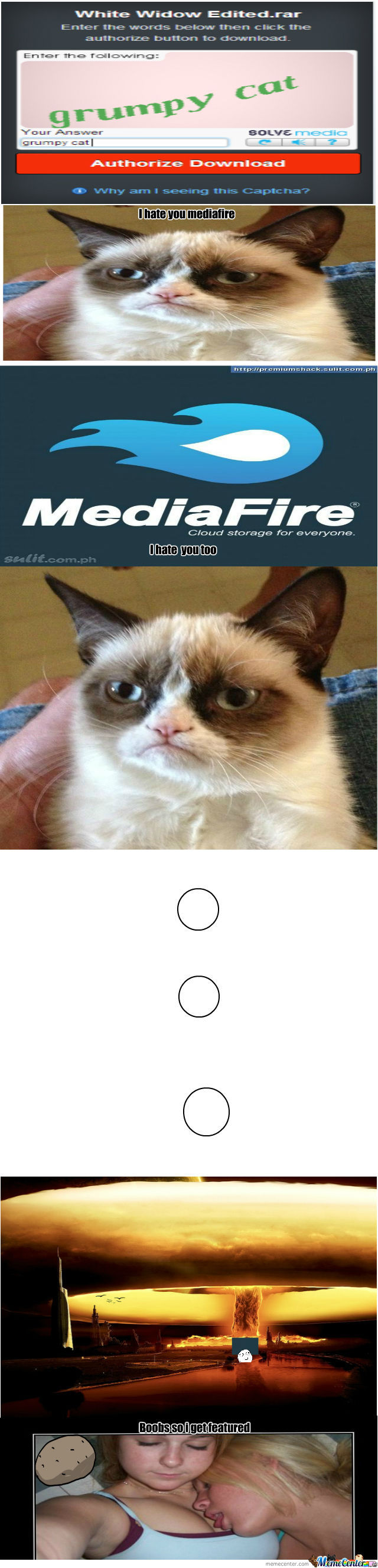 Mediafire Grumpy Cat