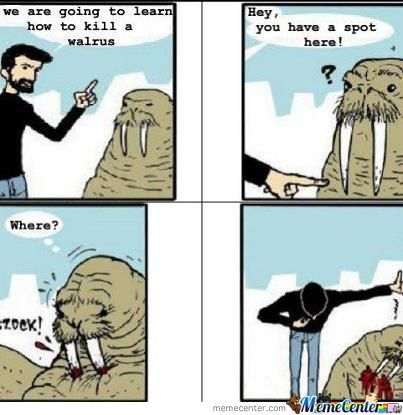Men. We Are Learning How To Kill A Walrus ..
