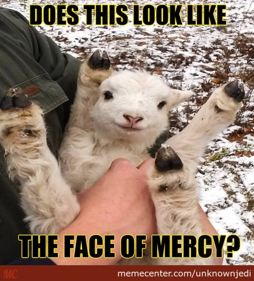 Mercy Is For The Weak!