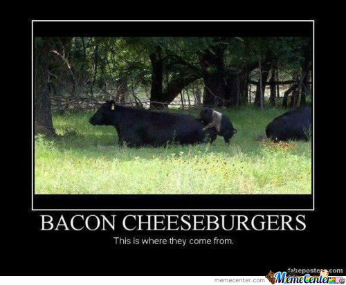 Miam ...bacon....