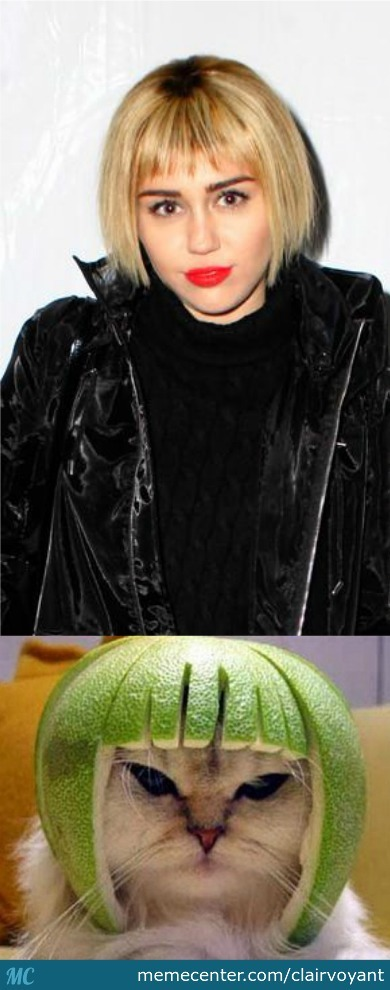 Miley Cyrus' New Hair Style Reminds Me Of Something Familiar..