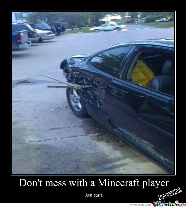 Minecraft Players