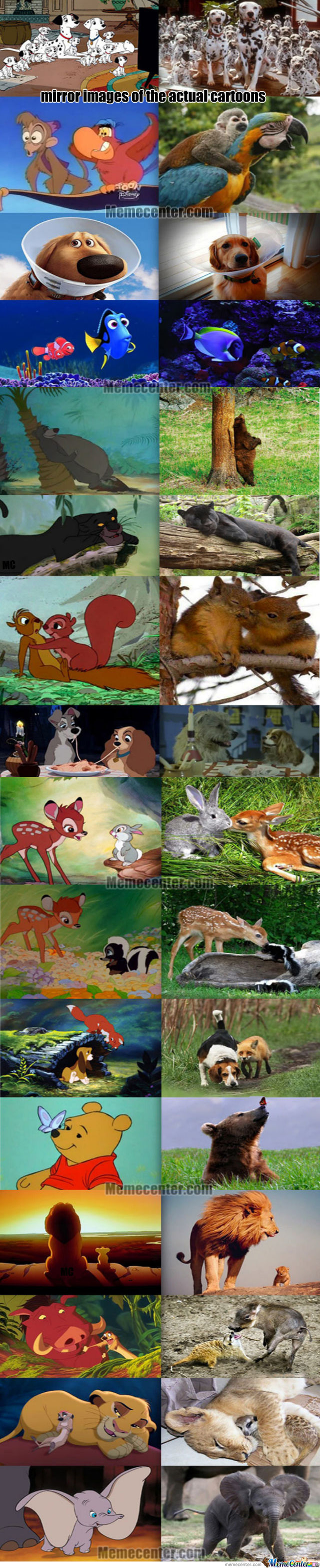 Mirror Images Of The Actual Cartoons Compilation .