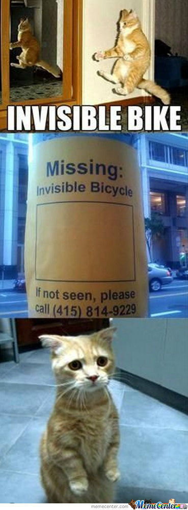 Missing: Invisible Bike