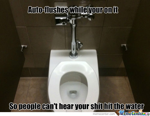 Misunderstood Auto Flush Toilets